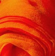Оранжевый 0065