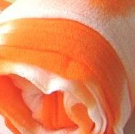 Оранжевый 0100