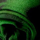 Зеленый 0068