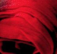 Красный 0060