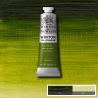 Масляная краска Winton, 37 мл, зеленая крушина
