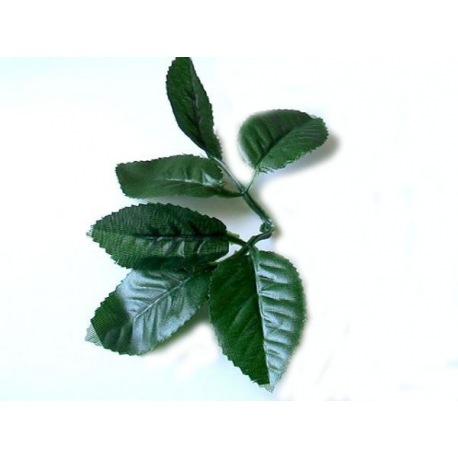 0112 Листья розы ( 5 шт.)