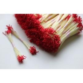 Тычинки красные удлиненные (с желтой ножкой)