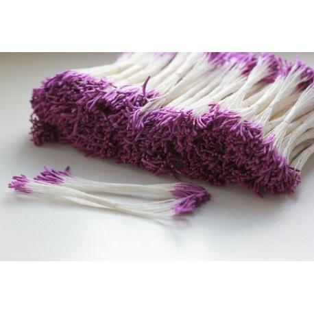 Тычинки фиолетовые удлиненные